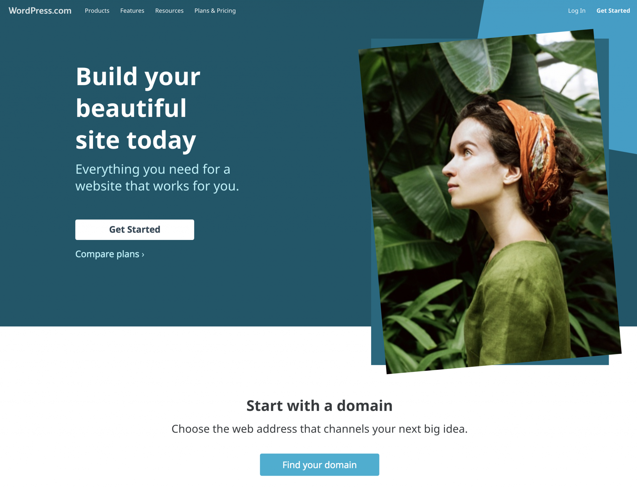 Wordpress website free