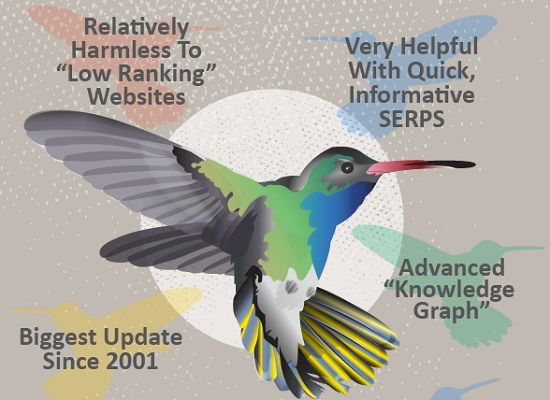 Google Hummingbird infographic